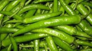 杭椒是尖椒吗?种子怎么种?